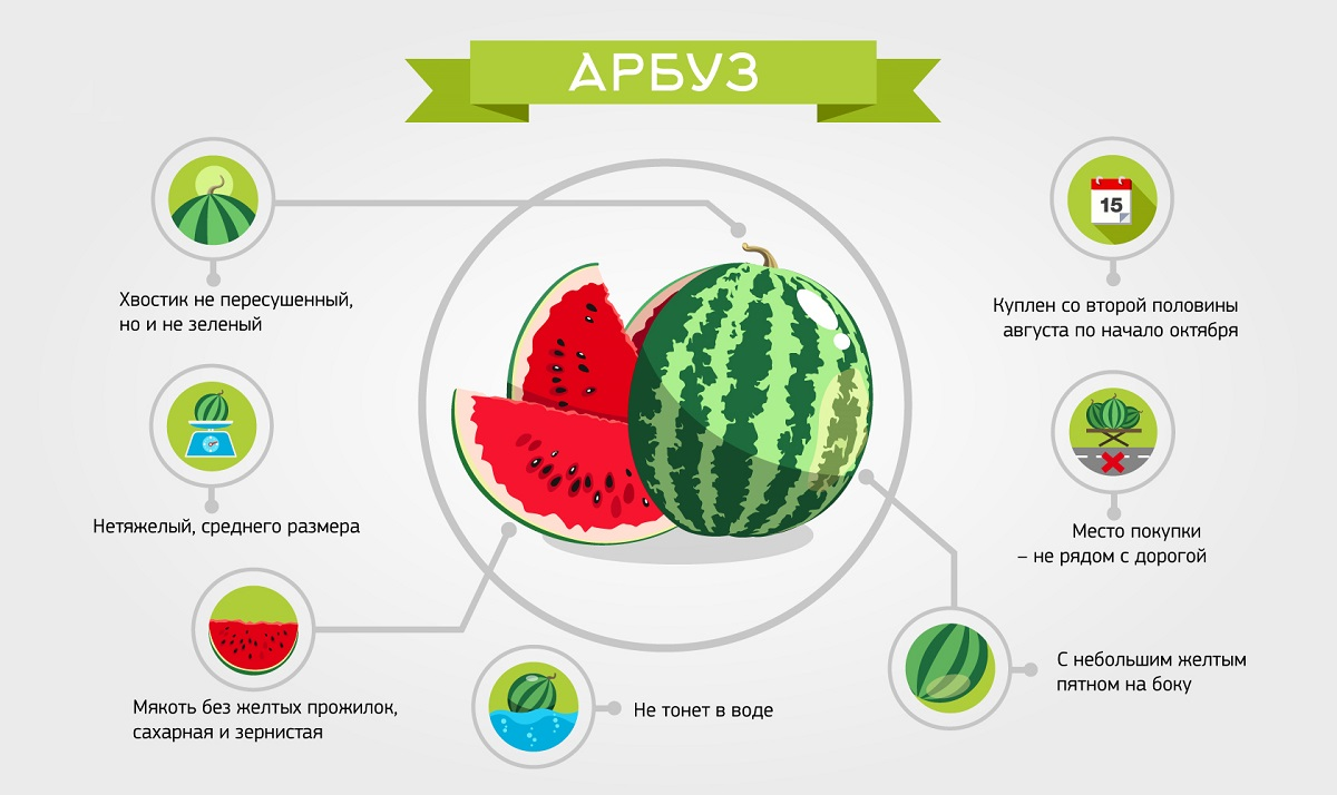 Правила выбора вкусного и полезного арбуза