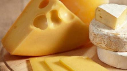 Виды запрещенного и разрешенного сыра при грудном вскармливании для кормящей мамы