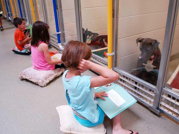 Дети в приюте читают свои первые книги для собак