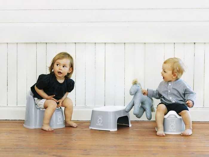 Процесс приучения с помощью игрушки