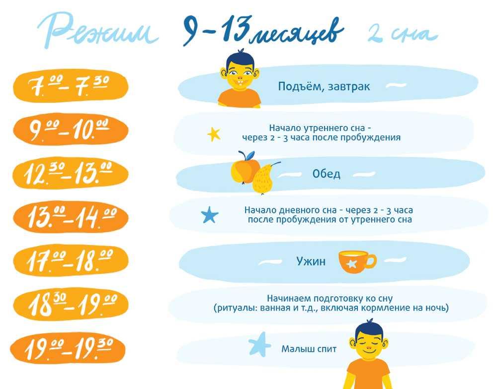 Распорядок дня ребенка в возрасте 9-13 месяцев