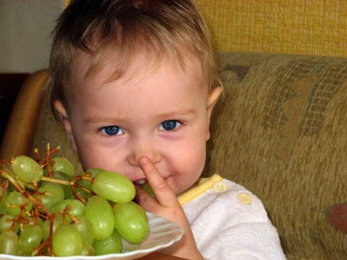 Ребенок пробует зеленый виноград из тарелки
