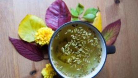 Как и зачем применяется чай с фенхелем для новорожденных