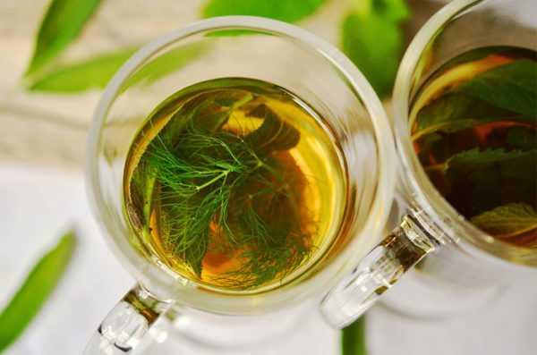 Чай из свежего фенхеля нужно давать малыми дозами