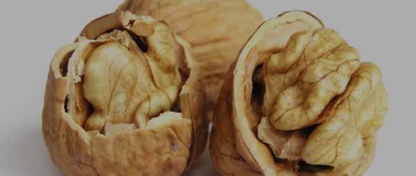 Грецкие орехи полезны для ребенка