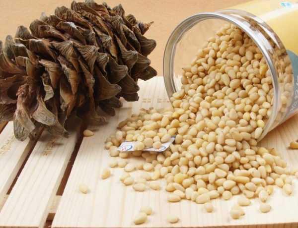 Кедровые орехи полезны, но аллергенны