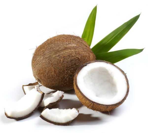 Вреден ли кокос