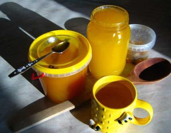 Нагретый мед становится вредным