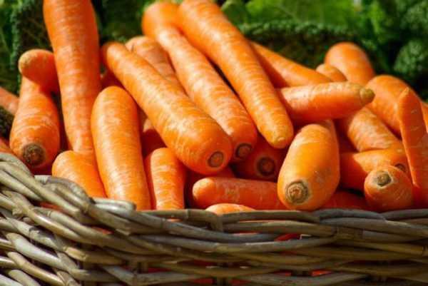 Морковь содержит микроэлементы