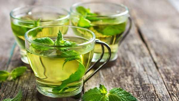 Мятный чай положительно влияет на лактацию