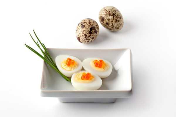 Варка перепелиных яиц обязательна