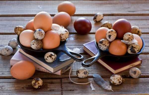 Яйца полезны маме, но опасны для детей