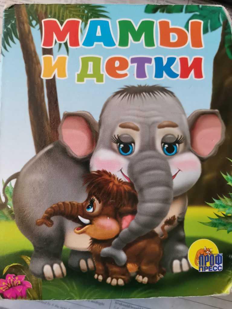 книги, детские книги, красивые детские книги, лучшие детские книги, книги для новорождённых, выбрать книгу, выбрать книгу ребёнку, советы книги, музыкальные книги для детей, новые книги, новые книги для детей, книги игрушки, простые книги, ребёнок читает, ребёнок любит книги, как научить читать, развитие моторики, развитие речи, развитие памяти, развитие внимания, зрение, медведь, котёнок, щенок, зайчик, мишка